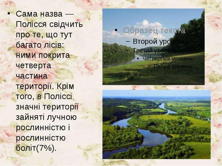 Сама назва — Полісся свідчить про те, що тут багато лісів: ними покрита четве...