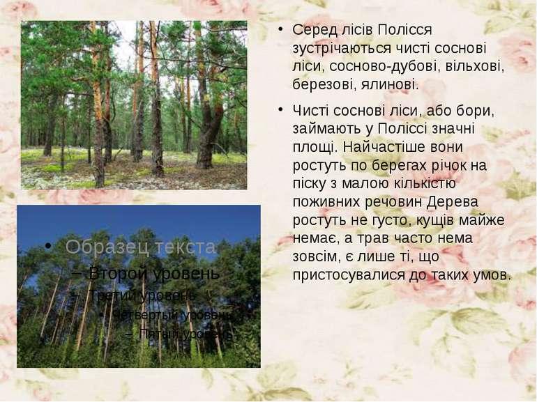 Серед лісів Полісся зустрічаються чисті соснові ліси, сосново-дубові, вільхов...