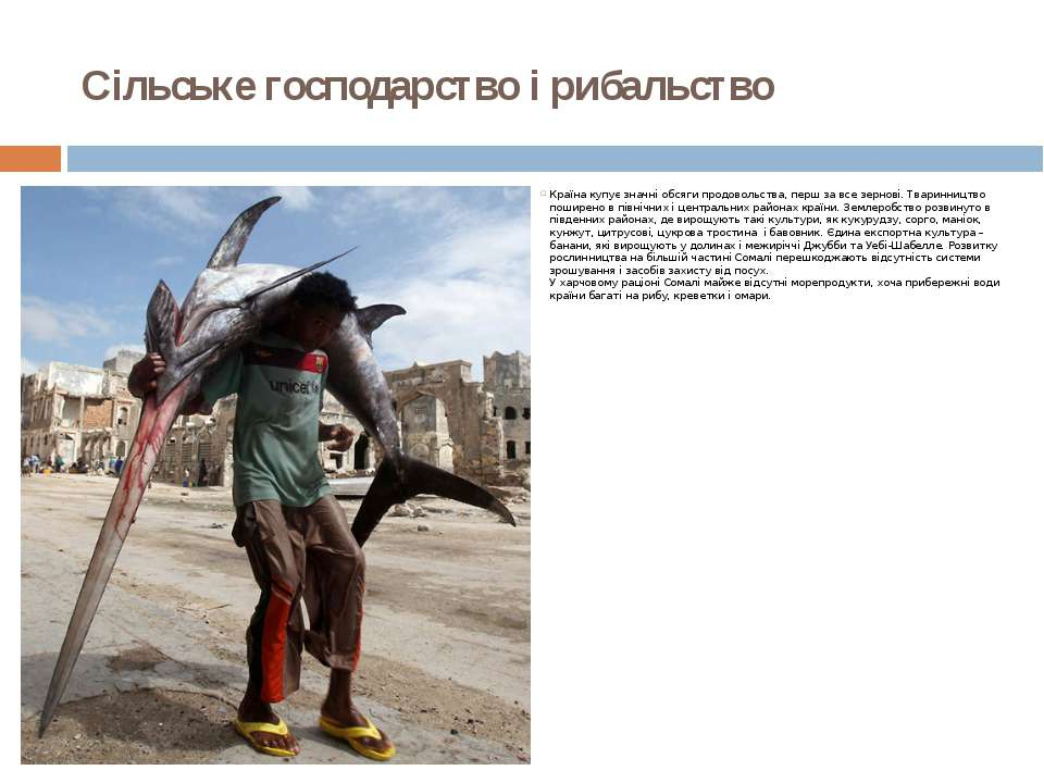 Сільське господарство і рибальство Країна купує значні обсяги продовольства,...