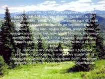 У флорі природного парку налічується 890 видів судинних рослин, 24 види мохоп...