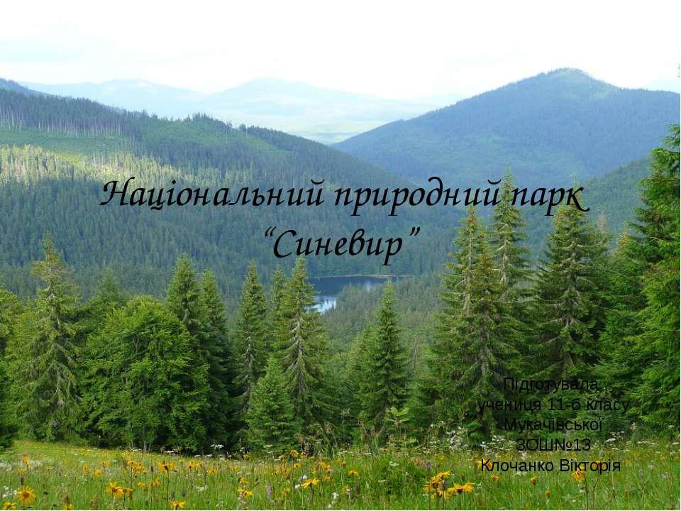 """Національний природний парк """"Синевир"""" Підготувала учениця 11-б класу Мукачівс..."""
