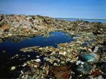Последствия загрязнения океана Врезультате загрязнения Мирового океана приво...