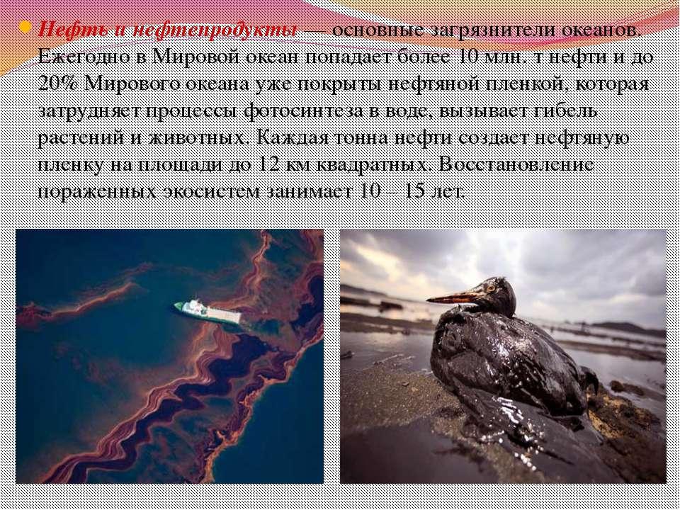 Сбрасывание мусора в воды мирового океана вызвало образование Мусорных пятен ...