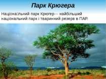 Парк Крюгера Націона льний парк Крюгер— найбільший національний парк і тварин...