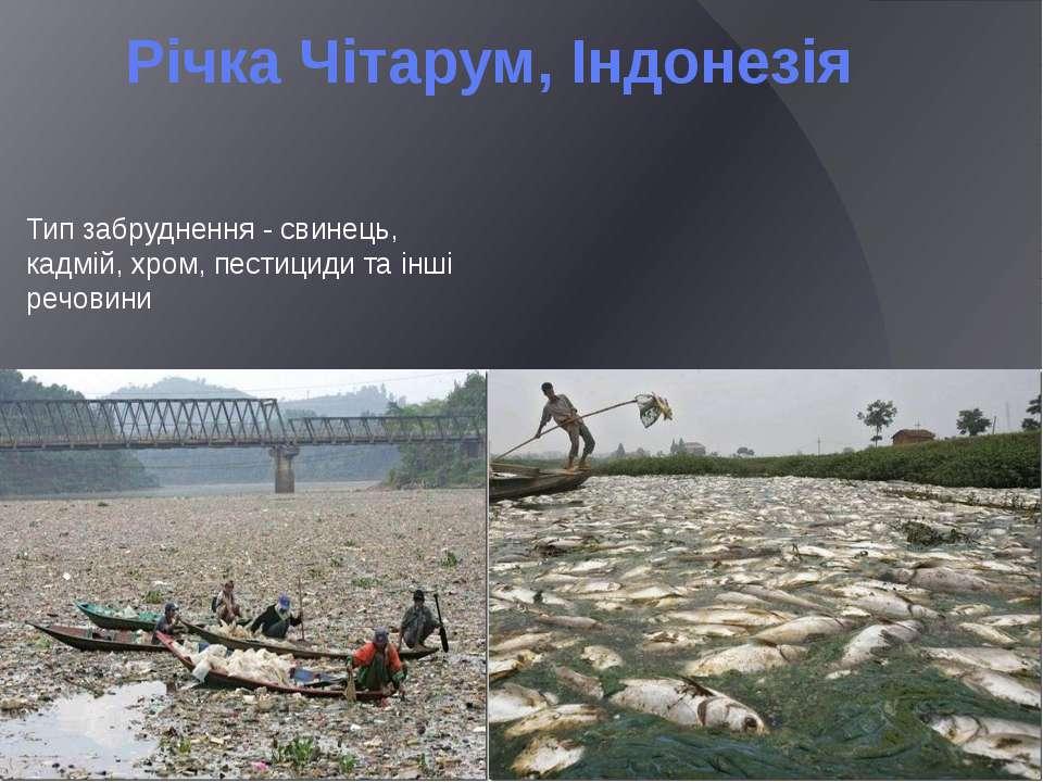 Річка Чітарум, Індонезія Тип забруднення - свинець, кадмій, хром, пестициди т...