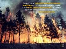 Кроме того, леса могут быть уничтожены вследствие естественных причин, таких ...