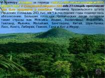 К примеру в Нигерии за период с 1900 по 2005 год был уничтожен 81 % древних л...
