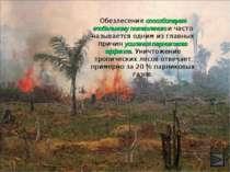 Обезлесение способствует глобальному потеплению и часто называется одним из г...