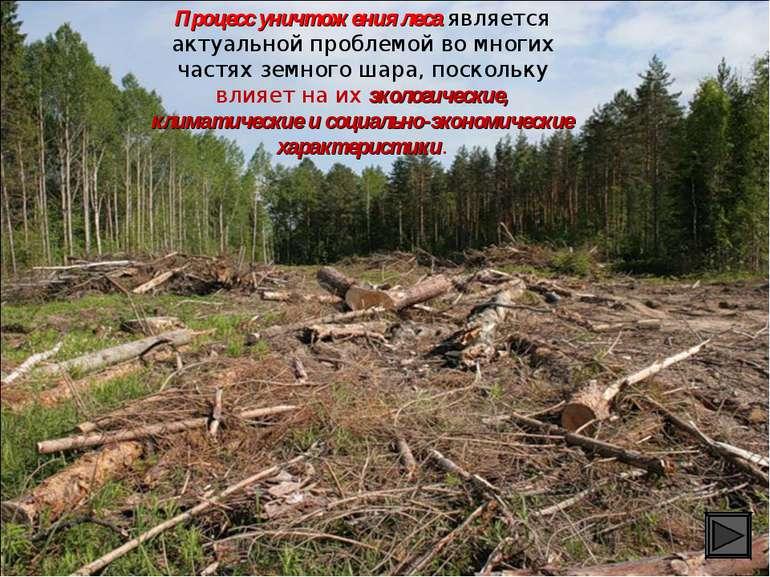 Процесс уничтожения леса является актуальной проблемой во многих частях земно...