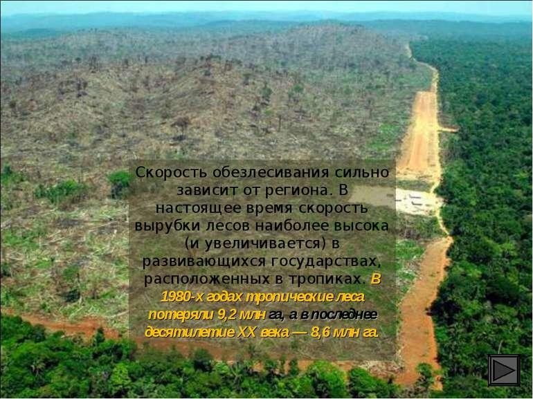 Скорость обезлесивания сильно зависит от региона. В настоящее время скорость ...