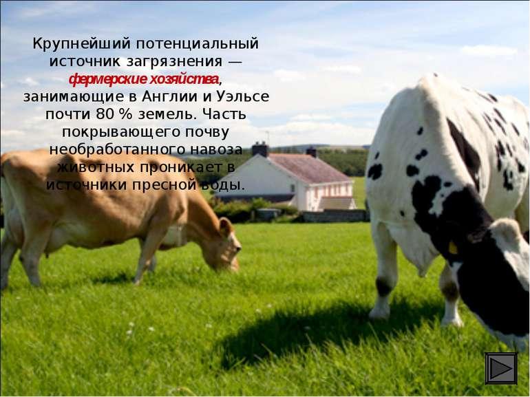 Крупнейший потенциальный источник загрязнения — фермерские хозяйства, занимаю...