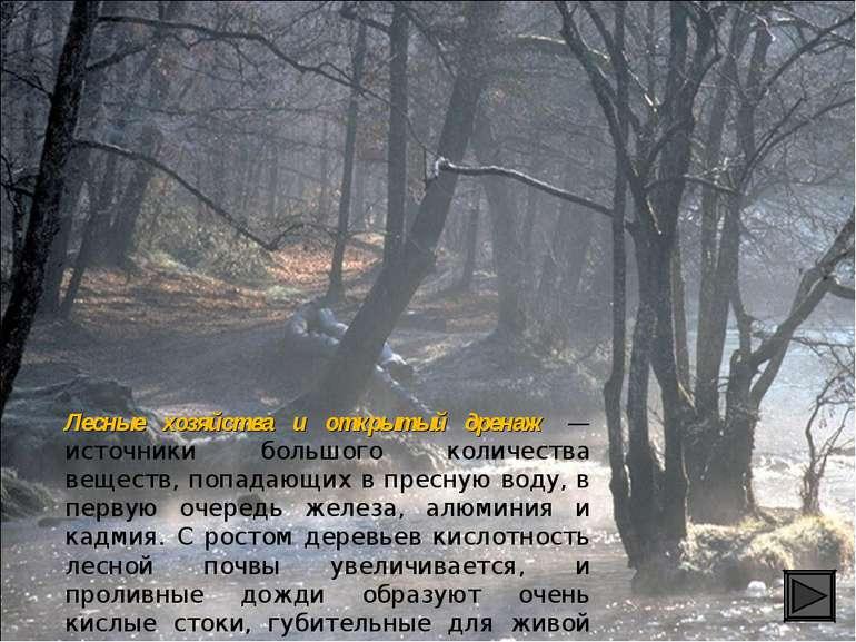 Лесные хозяйства и открытый дренаж — источники большого количества веществ, п...