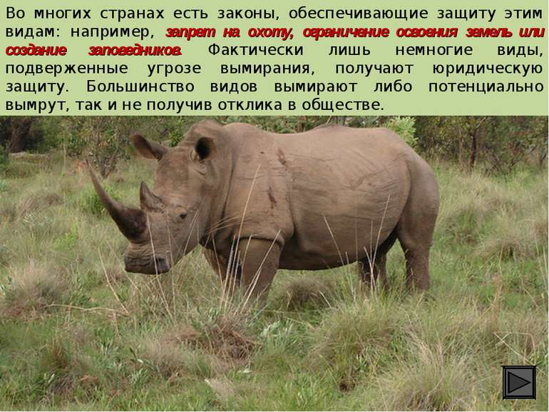 Во многих странах есть законы, обеспечивающие защиту этим видам: например, за...