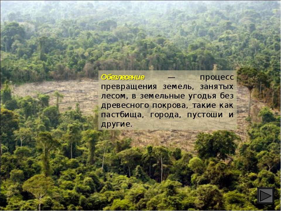 Обезлесение — процесс превращения земель, занятых лесом, в земельные угодья б...