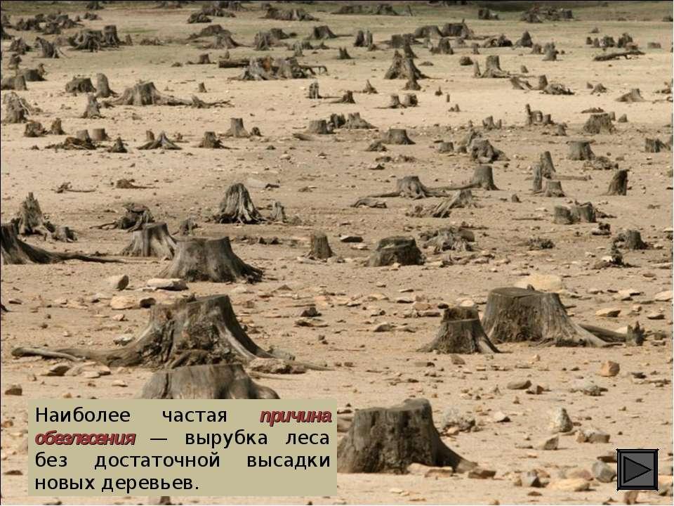 Наиболее частая причина обезлесения — вырубка леса без достаточной высадки но...