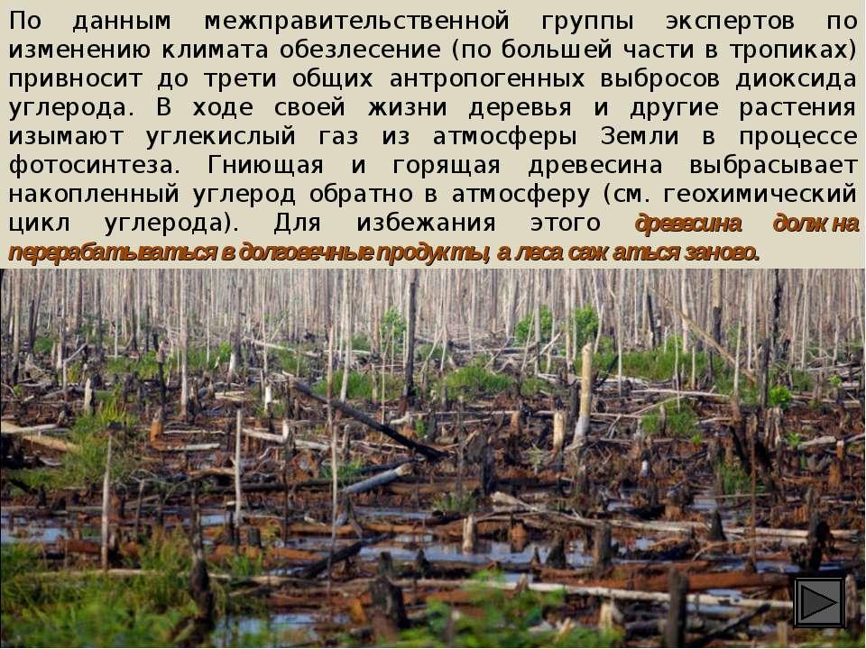 По данным межправительственной группы экспертов по изменению климата обезлесе...