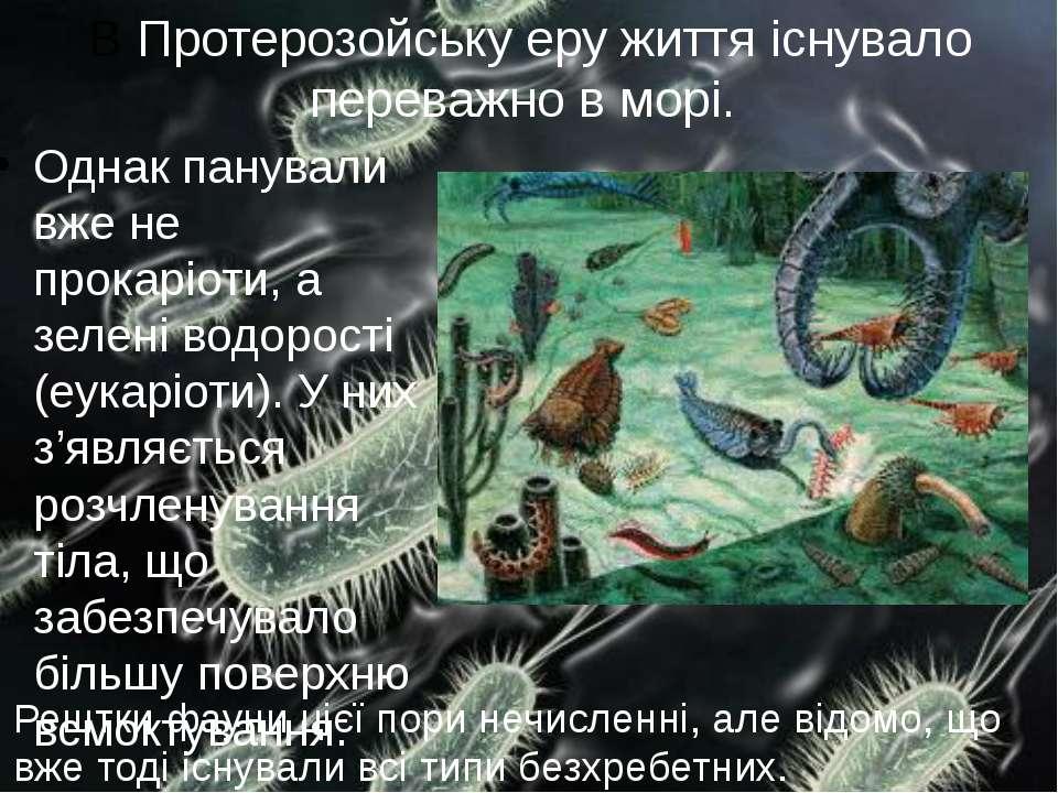 В Протерозойську еру життя існувало переважно в морі. Однак панували вже не п...