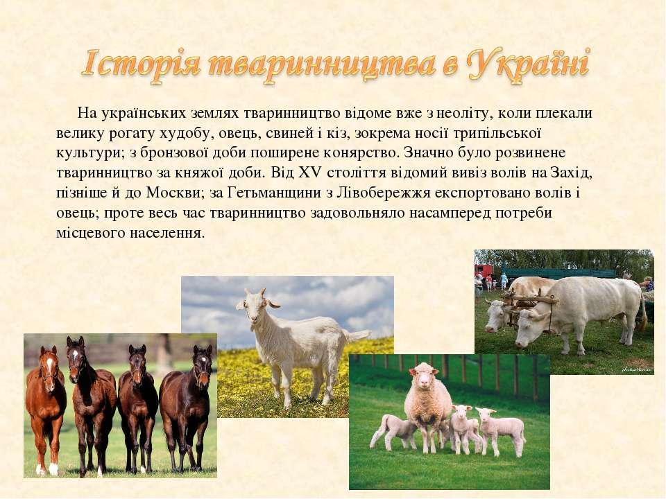 На українських землях тваринництво відоме вже з неоліту, коли плекали велику ...