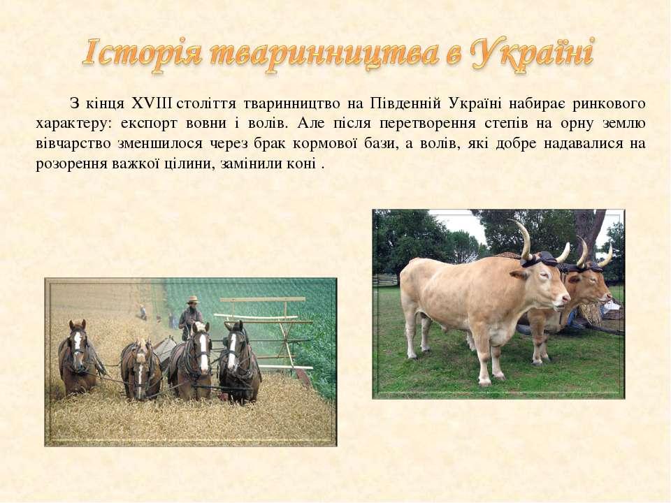 З кінця XVIIIстоліття тваринництво на Південній Україні набирає ринкового ха...