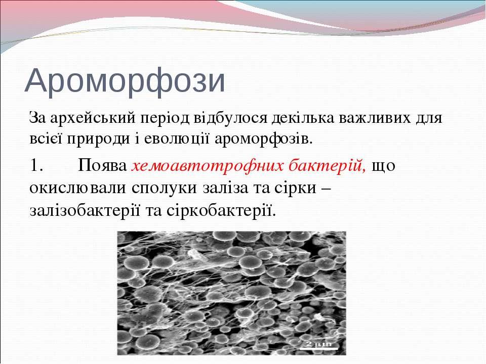 Ароморфози За архейський період відбулося декілька важливих для всієї природи...