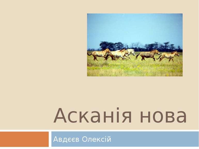 Асканія нова Авдєєв Олексій