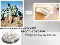 Розмаїтого Дмитра, 9-Б клас Розвиток цукрової промисловості в Україні