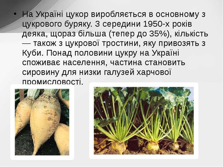 На Україні цукор виробляється в основному з цукрового буряку. З середини 1950...