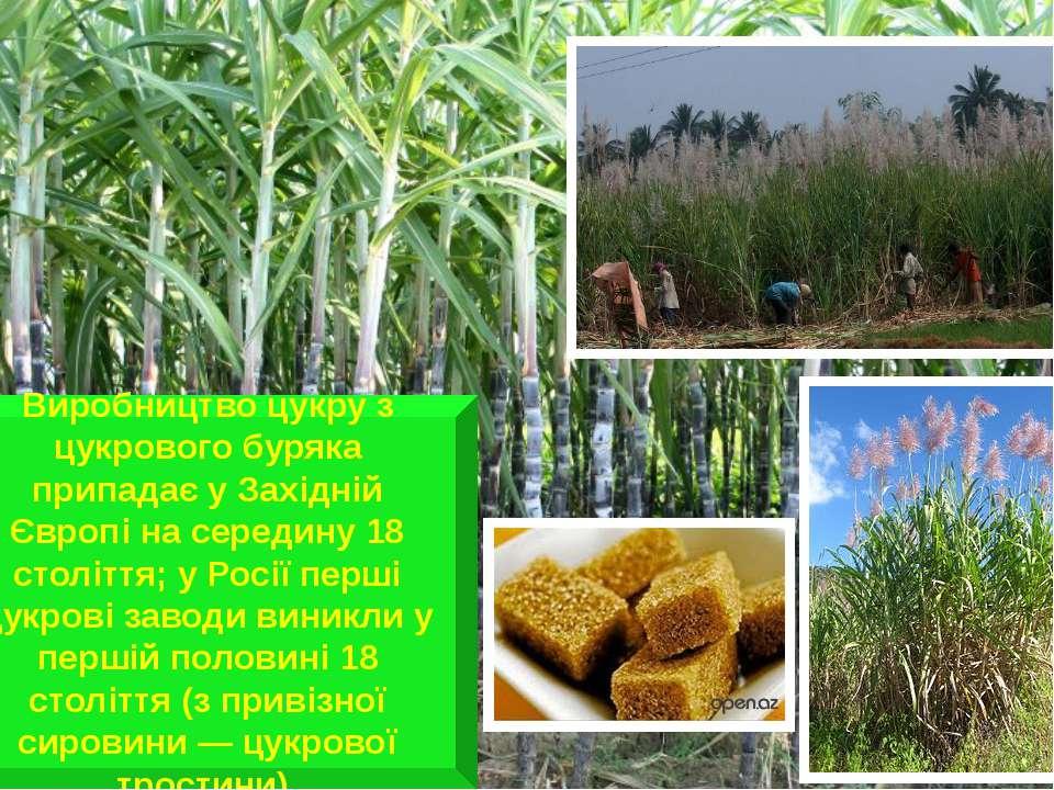 Виробництво цукру з цукрового буряка припадає у Західній Європі на середину 1...