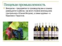 Пищевая промышленность Виноделие – предприятия по производству вин и коньяка ...