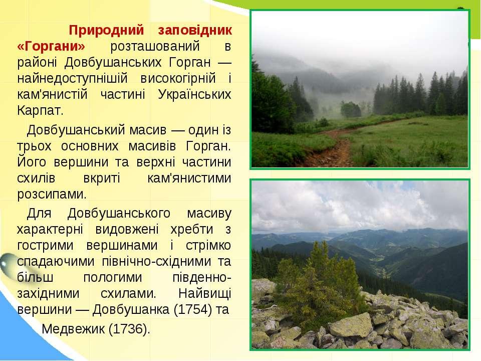Природний заповідник «Горгани» розташований в районі Довбушанських Горган — н...