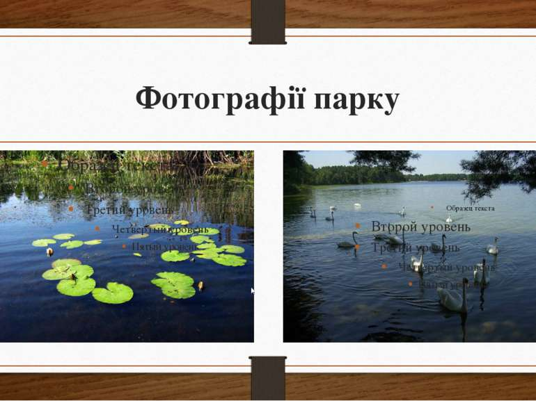 Фотографії парку