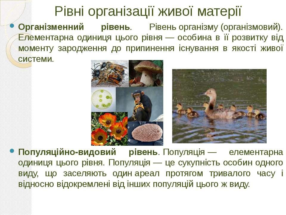 Рівні організації живої матерії Організменний рівень. Рівеньорганізму(орган...