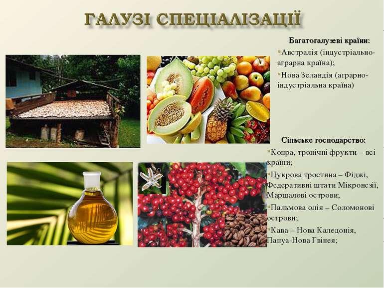 Сільське господарство: Копра, тропічні фрукти – всі країни; Цукрова тростина ...