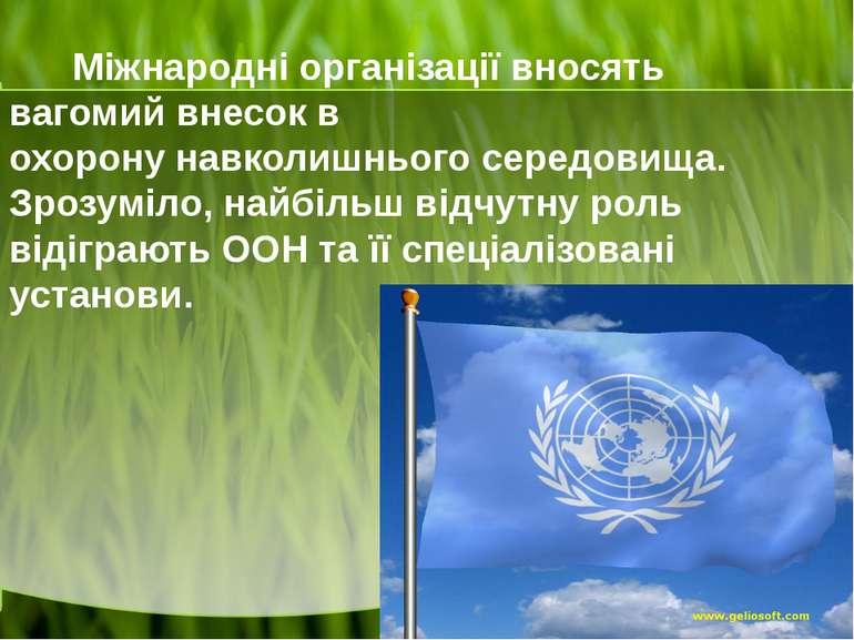 Міжнародні організаціївносять вагомий внесок в охоронунавколишнього середов...