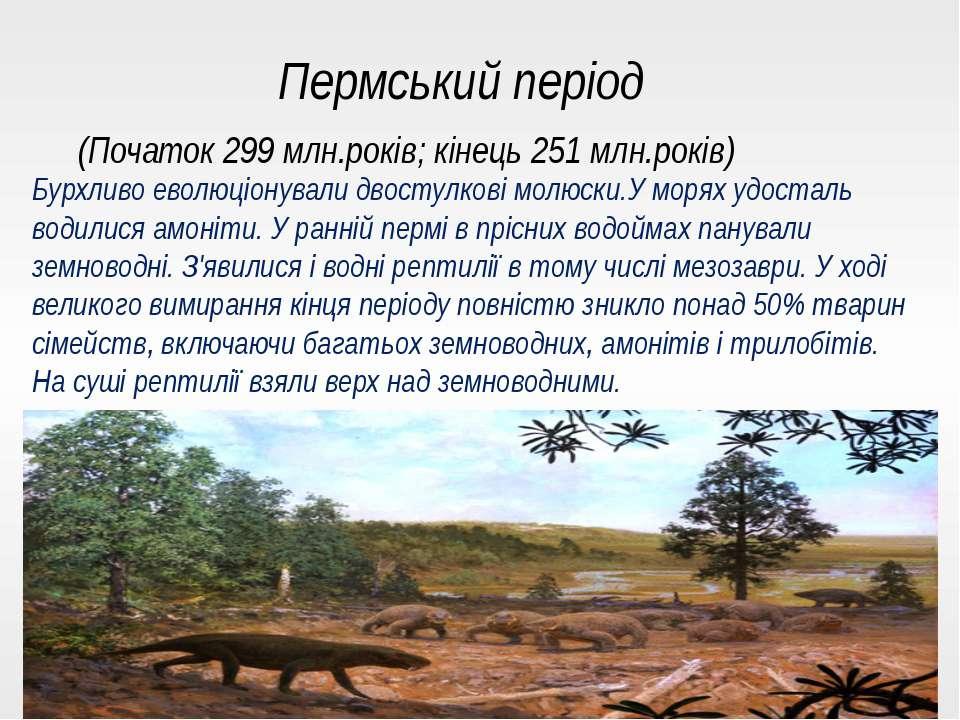 Пермський період (Початок 299 млн.років; кінець 251 млн.років) Бурхливо еволю...
