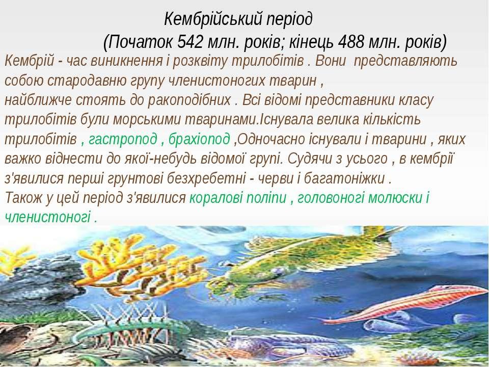 Кембрійський період (Початок 542 млн. років; кінець 488 млн. років) Кембрій -...