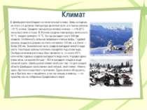 Климат В Швейцарии преобладает континентальный климат. Зимы холодные, на плат...