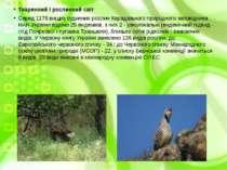 Тваринний і рослинний світ Серед 1176 вищих судинних рослин Карадазького прир...