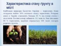 Характеристика стану ґрунту в місті Найбільше природне багатство України — чо...