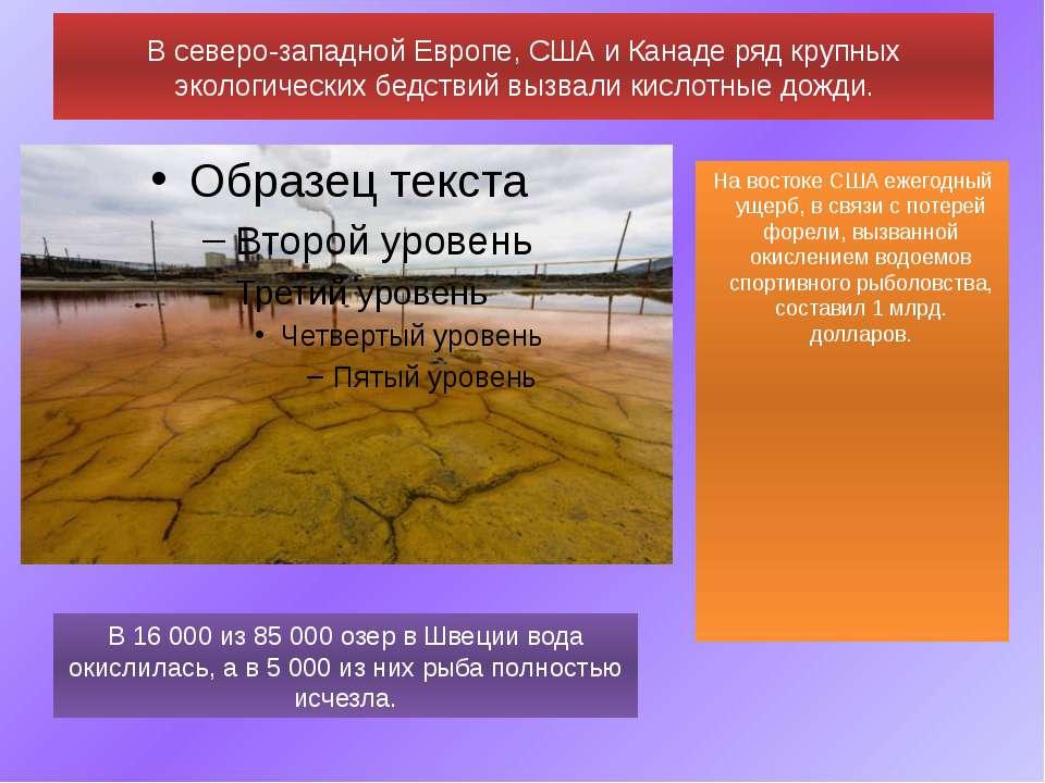 В северо-западной Европе,СШАи Канаде ряд крупных экологических бедствий выз...