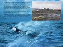 Та найважливішою екологічною проблемою Світового океану єзабруднення. Під за...