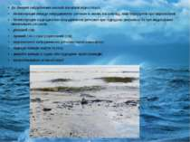 Доджерел забруднення океанів та моріввідносяться: - безпосередні викиди заб...