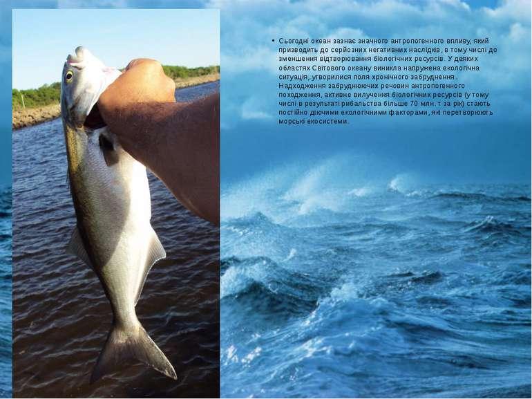Сьогодні океан зазнає значного антропогенного впливу, який призводить до серй...