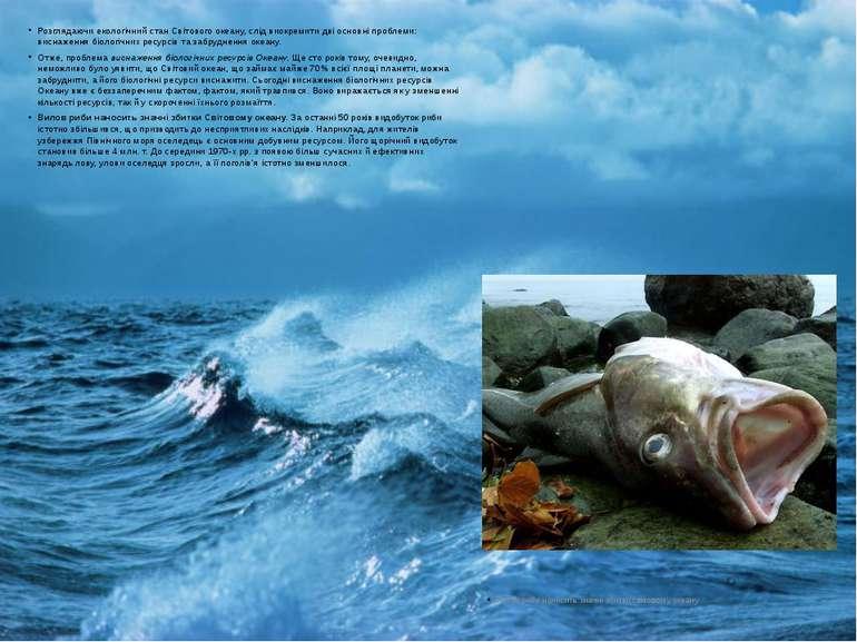Розглядаючи екологічний стан Світового океану, слід виокремити дві основні пр...
