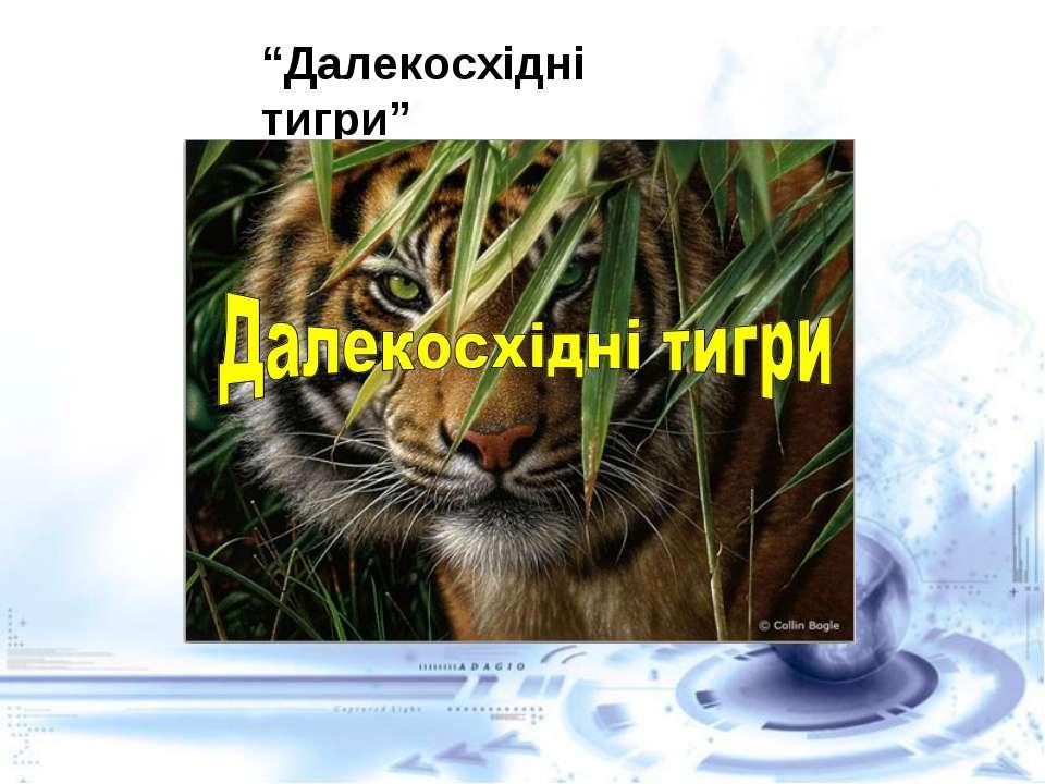 """""""Далекосхідні тигри"""""""