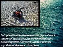 Забруднена вода несприятлива для водних і наземних організмів ,зумовлює дегра...
