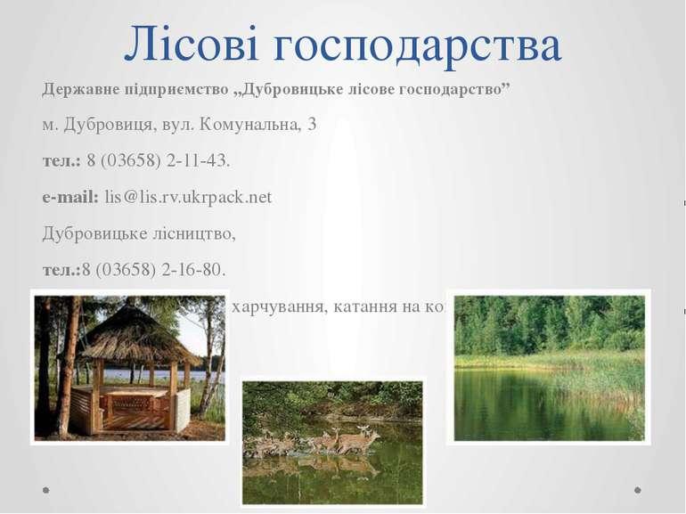 """Лісові господарства Державне підприємство """"Дубровицьке лісове господарство"""" м..."""