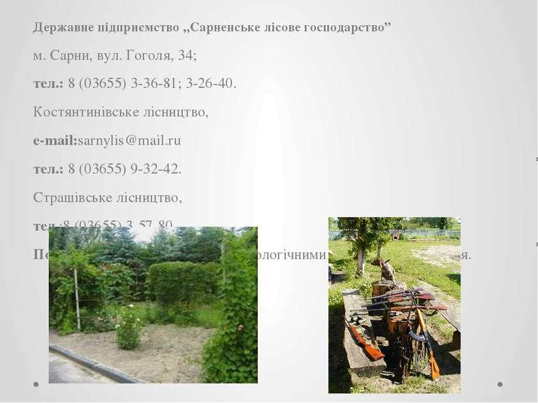 """Державне підприємство """"Сарненське лісове господарство"""" м. Сарни, вул. Гоголя,..."""