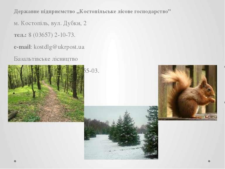 """Державне підприємство """"Костопільське лісове господарство"""" м. Костопіль, вул. ..."""