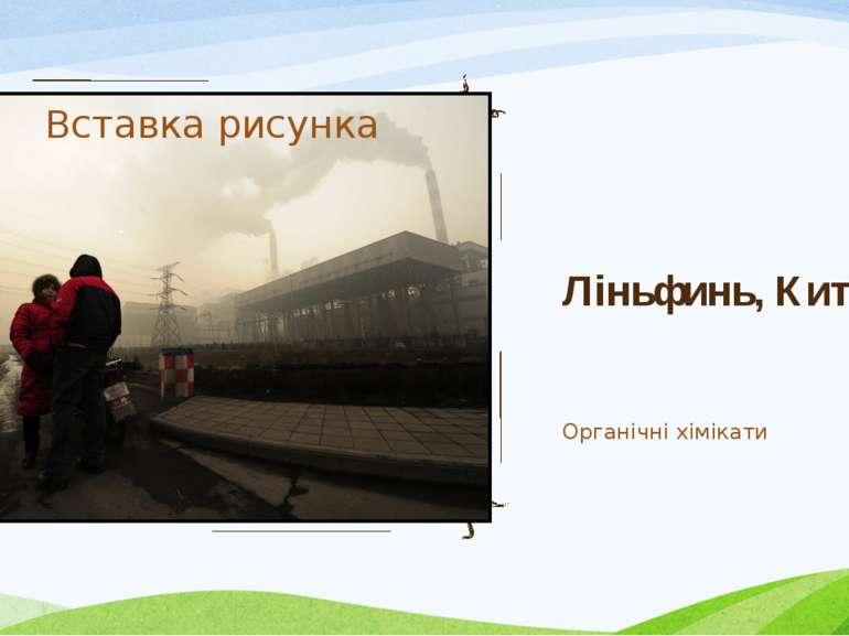 Ліньфинь, Китай Органічні хімікати